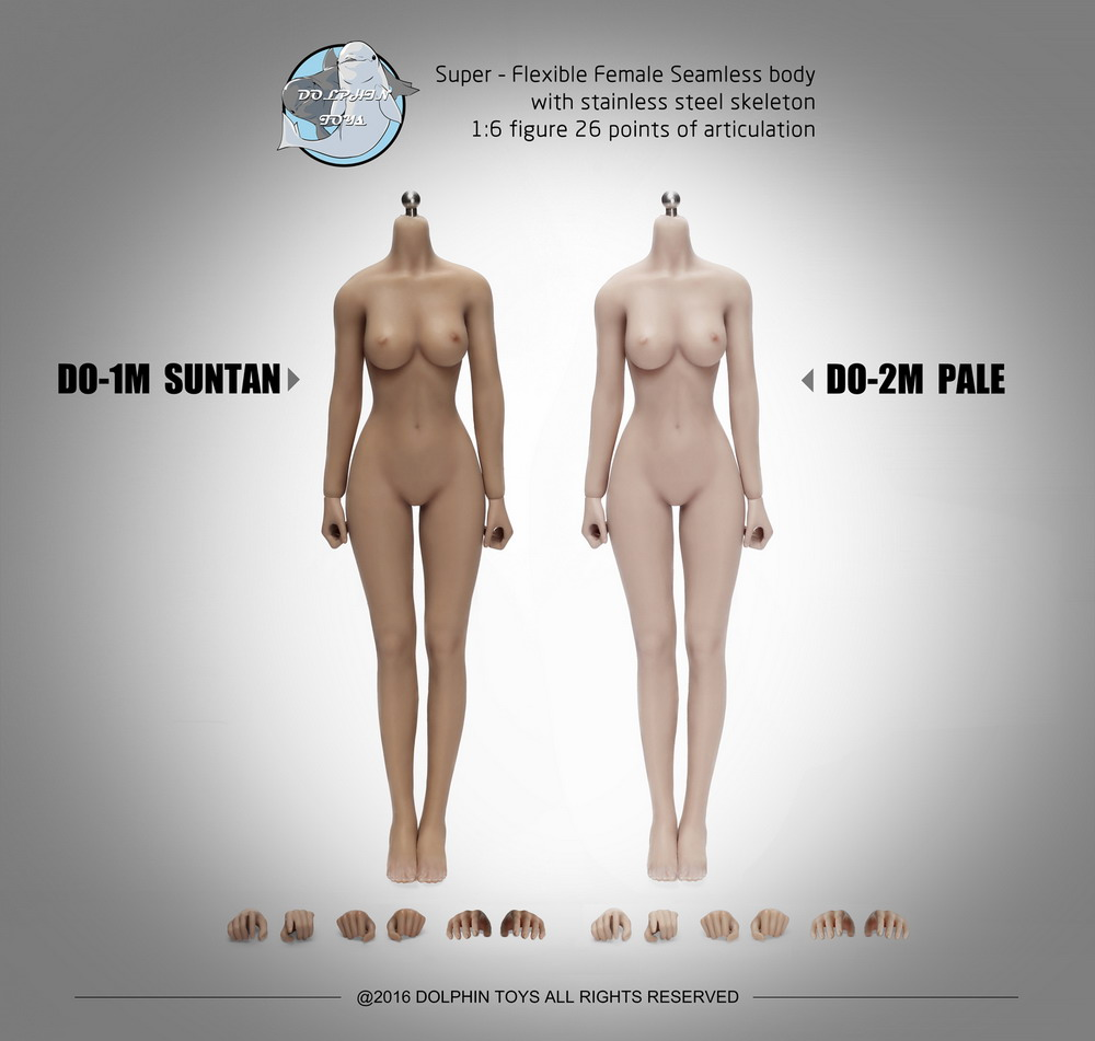Dolphin Toys 1/6th Scale Super Flexible Stainless Steel Skeleton Seamless Female Body