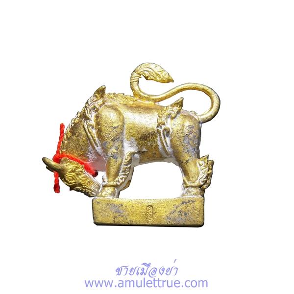 พญาวัว พฤษภเวทย์ เนื้อชนวน ตะกรุดเงิน จารมือ พระอาจารย์สุรเจตน์ เข็มทอง วัดหนองหิน กาญจนบุรี ปี 2559