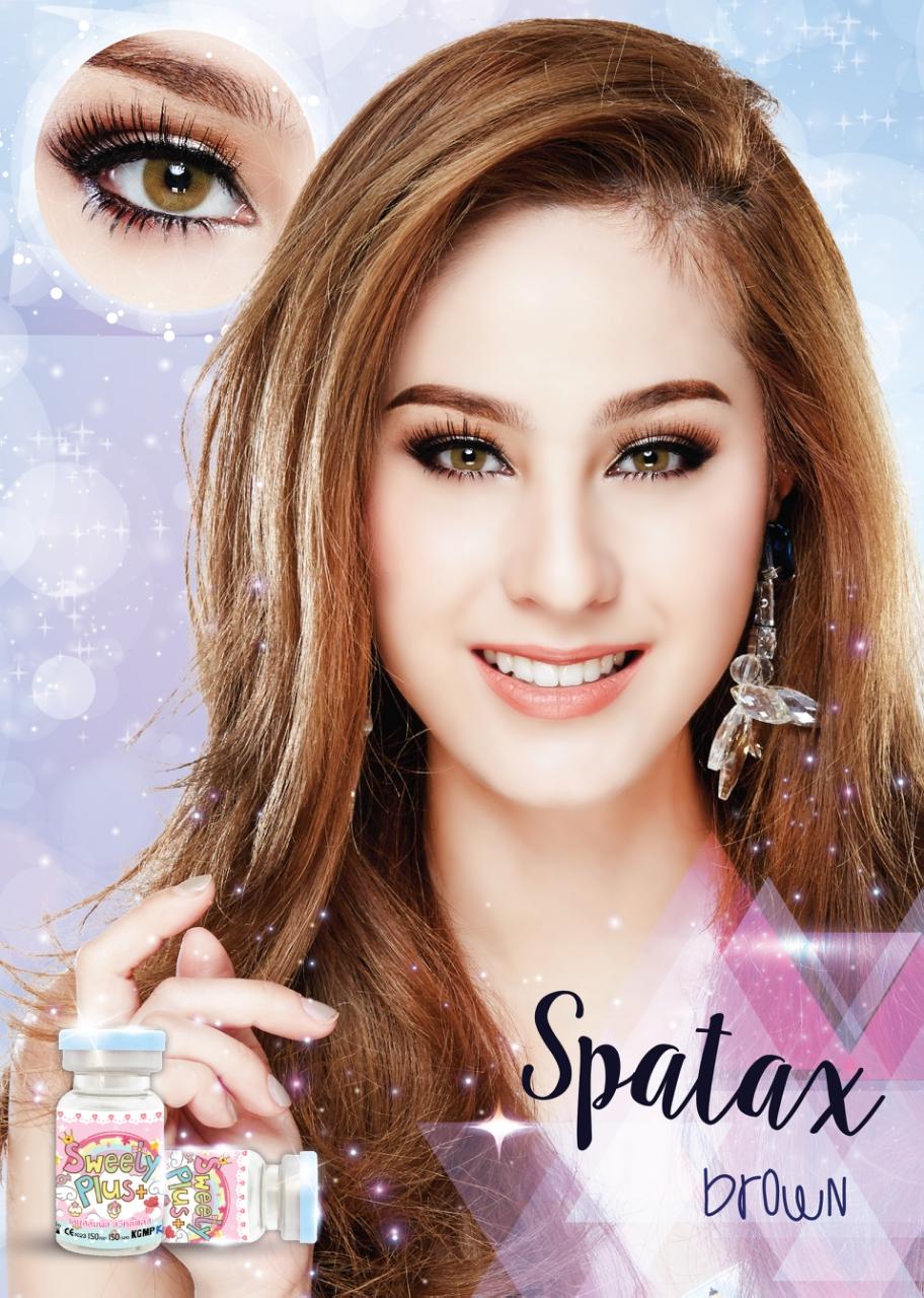 Spatax - brown