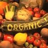 ประโยชน์ของอาหารออแกนิค Organic Food 15 ข้อ