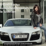 Car Spa by GreenScents Organic
