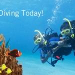 หลักสูตร Discover Scuba Diver