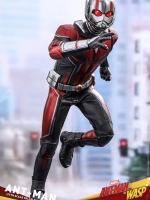 28/07/2018 Hot Toys MMS497 ANT-MAN AND THE WASP - ANT-MAN