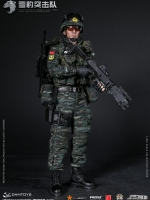 09/10/2017 DAMTOYS 78052 CHINESE PEOPLE'S ARMED POLICE FORCE SNOW LEOPARDCOMMANDO UNIT TEAM MEMBER
