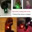 ปลอกคอสุนัขเรืองแสง thumbnail 3
