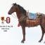 Mr.Z 1/6 MRZ028 001 - 006 Animal model - Ili Horses thumbnail 59
