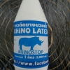 RHINO LATEX กาวติดยางบวมน้ำ(1000 ml.)