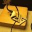 ขาย Auglamour AG-R8 หูฟังระดับ Hi-Fi เสียงดี เบสเด่น ถอดสายได้ มี 2 สี thumbnail 15